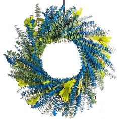 Bahama Blue Eucalptus Wreath