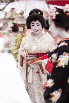 Katsuru during Baikasai Japanese Kimono, Japanese Art, Japanese Things, Memoirs Of A Geisha, Turning Japanese, Japan Photo, Nihon, Japanese Beauty, Japanese Culture