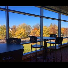 Gorgeous fall leaves can be seen from the second floor!