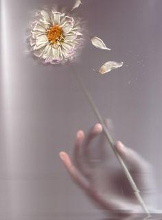 my magic by elena kropaneva