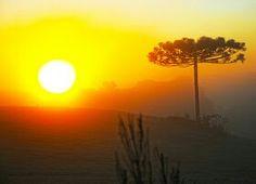 Pôr - do- sol em Lagoa Vermelha - RS