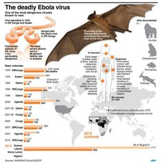 Here's Where The World Stands With Ebola RightNow
