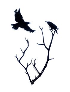 Engraving Printing, Moose Art, Bird, Prints, Animals, Animales, Animaux, Birds, Animal