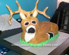 Homemade Deer Cake... This website is the Pinterest of Christmas cakes