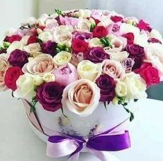 Beautiful Roses, Desserts, Plants, Bouquets, Bonito, Tailgate Desserts, Dessert, Plant, Deserts