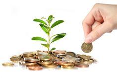 Big returns for small investors