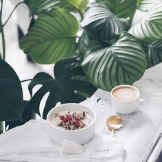 I don't have a problem with caffeine. I have a problem without caffeine 🙄 Life without coffee is scary 😬☕️ Morning guys! Morning Coffee, Coffee Time, Caffeine Addiction, Breakfast Of Champions, Morning Light, Breakfast Time, Nespresso, Scary, Plant Leaves