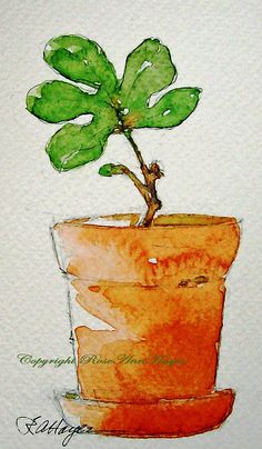 Baby Fig Tree Print of Watercolor Painting Floral Garden