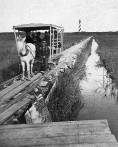 ❦ Passengers traveling on a horse railroad, 1891,  Anastasia Island, FL - Jeff Davies - Historical Florida III - FSU