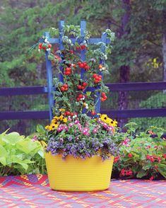 Creating a beautiful & functional container all in one.
