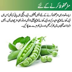 Check How to store Green Peas Recipe in Urdu. Learn to cook How to store Green PeasRecipe by chef at Masala TV show Good Health Tips, Natural Health Tips, Health And Beauty Tips, Healthy Tips, Cooking Recipes In Urdu, Easy Cooking, Cooking Tips, Home Health Remedies, Natural Health Remedies