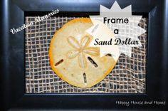 Framed Sand Dollar - DIY Wall Art  #sanddollar #beachdecor #wallart