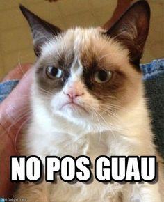 Grumpy cat meme (http://www.memegen.es/meme/wwb64c)