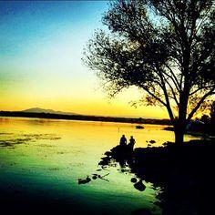 #lago #lake #trasimenolake #trasimeno #natureinside #nature_perfection #natura #naturelover #nature #tramonto #tramonti__italiani #sunset #sunsetlovers #sunset_madness #castiglionedellago #albero #trasimenonelcuore #lagotrasimenonelcuore #igersumbria #umbrians #umbria #italia #italy by giunico90