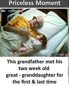 True Interesting Facts, Interesting Facts About World, Intresting Facts, True Love Quotes, Funny Quotes, Funny Memes, Funny Sarcasm, Wow Facts, Weird Facts