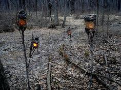 halloween swamp lights