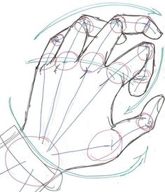 Drawing a Hand