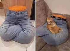 Brilliant Pet Bed DIY Ideas with Tutorials Diy Jouet Pour Chat, Animals And Pets, Funny Animals, Cat House Diy, Diy Cat Tree, Cat Playground, Cat Enclosure, Cat Room, Pet Furniture
