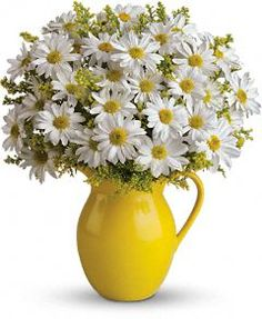 @Teleflora's Sunny Day Pitcher of Daisies  http://www.teleflora.com/flowers/bouquet/telefloras-sunny-day-pitcher-of-daisies-372656p.asp