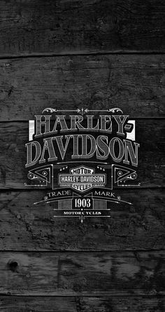 Trendy Ideas For Vintage Logo Bike Harley Davidson - Harley's and Stuff - Motorcycle Harley Davidson Images, Harley Davidson Logo, Harley Davidson Kunst, Harley Davidson Wallpaper, Harley Davidson Sportster 883, Harley Davidson Motorcycles, Fur Vintage, Vintage Logo, Bobber Motorcycle