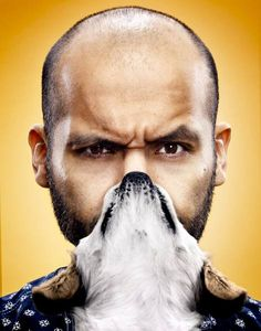 Cat Beards Dog Beards Oh my! Dog Bearding, Cat Beard, Beards, Dog Lovers, Dog Cat, Guys, Behance, Internet, Animals