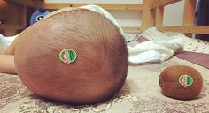 Look at the Size of That Kiwi! - Funny Baby - Look at the Size of That Kiwi! The post Look at the Size of That Kiwi! appeared first on Gag Dad.