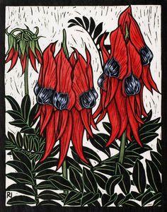 Rachel Newling: Sturt's Desert Pea, 29 x cm Edition of 50 Hand coloured linocut on handmade Japanese paper Australian Wildflowers, Australian Native Flowers, Australian Plants, Australian Artists, Plant Illustration, Botanical Illustration, Zentangle, Lino Art, Flannel Flower