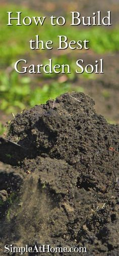 Building up your garden's soil is the best way to make your garden thrive this year. As we grow plants in our gardens year after year the oil breaks down and needs help to provide your garden with what it needs. Building up your soil is an easy taste that has a great reward. Compost,...Read More