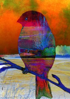 Bird at Beaver Dam digital collage printable download flowers garden colorful Robin Mead