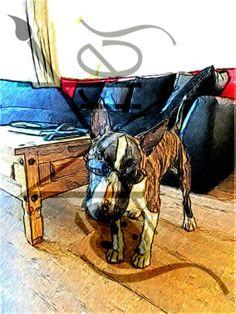 Transforme sua fotografia em arte digital!  Acesse: http://www.soartes.net  #artes #fotografiaemarte #computacaografica #artedigital