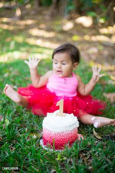 red tutu, pink ombre cake for a smash the cake 1 year birthday photo shoot