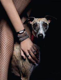 A girl's best friend, shot for Tatler Russia by Thomas Lagrange