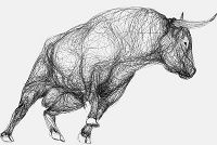 Bull 8 - marcus@marcusjames.co.uk