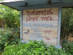 Maharajah Jungle Trek Tour-Animal Kingdom http://www.wdwfanzone.com/2017/07/maharajah-jungle-trek-tour-animal-kingdom/