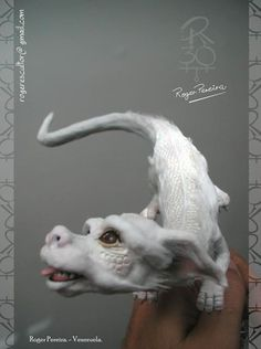falkor, looks like a dragon.