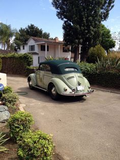 Beetle Bug, Vw Beetles, Vw Beetle Convertible, Cute Cars, Newport Beach, Bugs, California, Facebook, Type