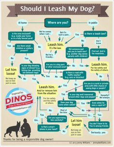 Should You leash your dog infographic Text Bubble, Yorky, Dog Information, Old Dogs, Dog Training Tips, Pet Health, New Tricks, Dog Care, Dog Owners