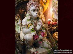 Sri Hanuman Wallpaper (003)   Download Wallpaper: http://wallpapers.iskcondesiretree.com/sri-hanuman-iskcon-bhaktivedanta-manor-wallpaper-003/  Subscribe to Hare Krishna Wallpapers: http://harekrishnawallpapers.com/subscribe/  #Hanumanji