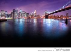 THE BEAUTY OF NEW YORK CITY