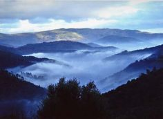 The Cévennes are a natural preserve which ranks in its variety of flora and fauna amongst the richest to be found in Europe. It is a walker's paradise where wild mountainous country, open moor land, forests, streams and steppe are settled with hamlets, gardens, terraces, meadows and pastures.