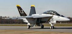 F-18F Jolly Rogers.