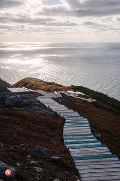 La Skyline Trail, c'est 7 kilomètres de rando au beau milieu d'un océan de verdure qui mènent tout droit sur le toit de Cape Breton au Canada. Tour Du Canada, Places To Travel, Places To See, Atlantic Canada, Cape Breton, Newfoundland And Labrador, Prince Edward Island, Beautiful Places To Visit, Canada Travel