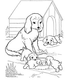 wwwcoloring pagescomanimals Farm Animal Coloring Sheets
