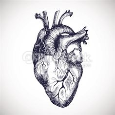 Illustrations Stock Photos and Illustrations - Royalty-Free Images - Thinkstock