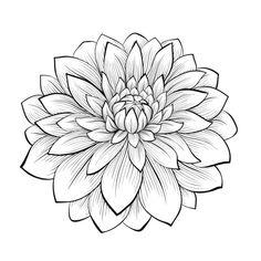 disegnare fiori stilizzati - Cerca con Google