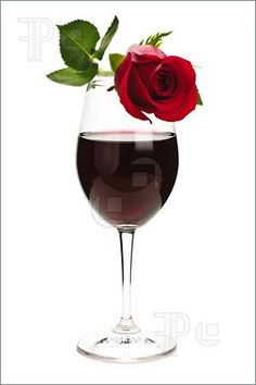 Red Rose & Red Wine
