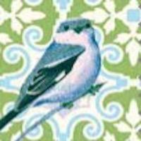 Green Bird Print Notting Hill