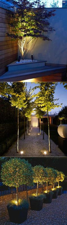 Adding suitable led lights to your garden or yard trees will greatly enhance the night landscape.