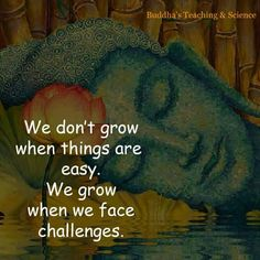 Challenges are what help us to grow in the best of all possible ways.
