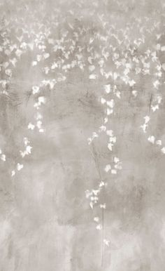 Grotte - trove wallpaper
